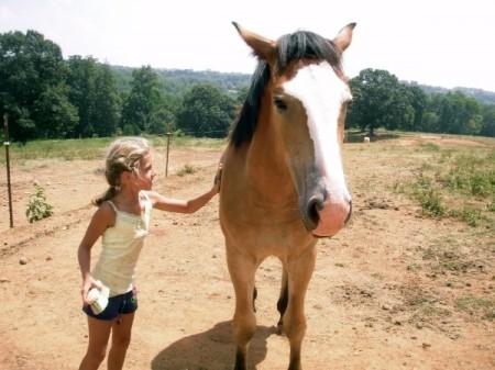 Roanoke horseback riding